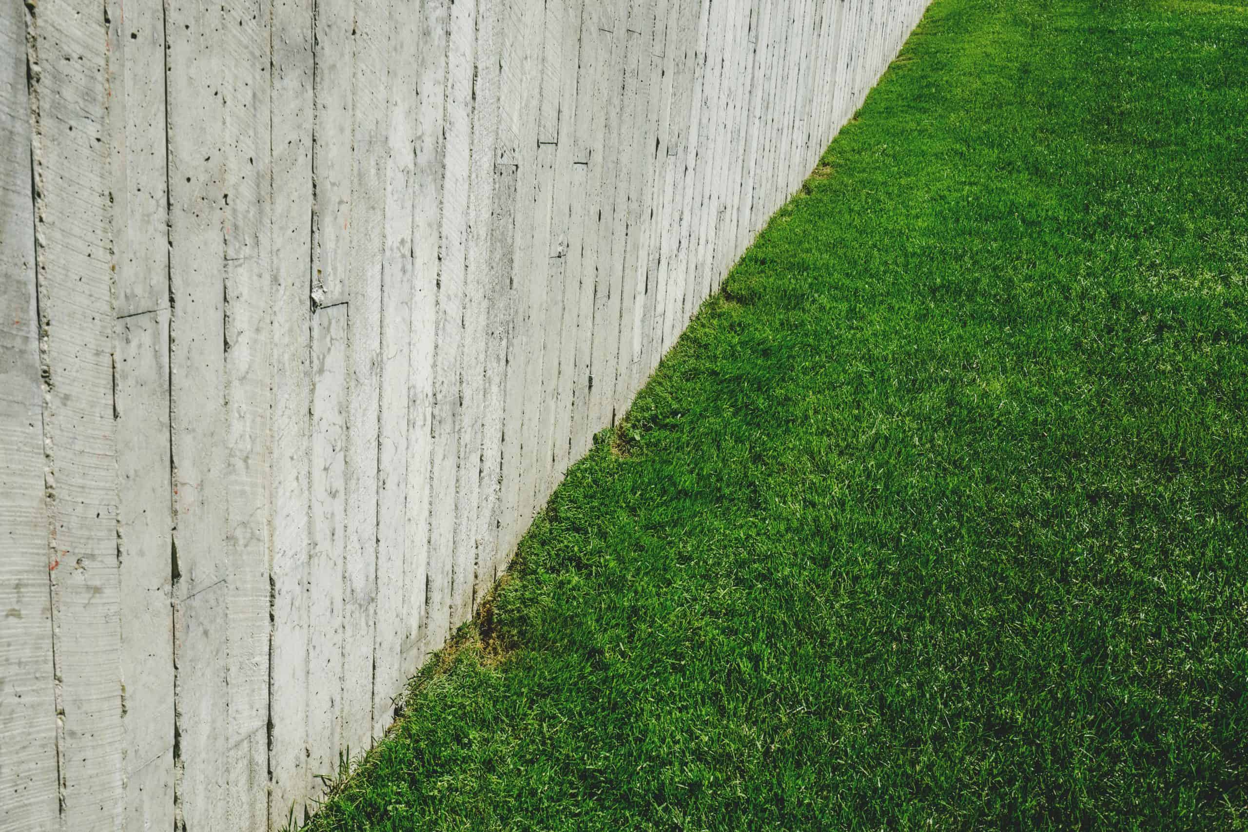 How Much To Install Fencing in My Garden? - Within Home